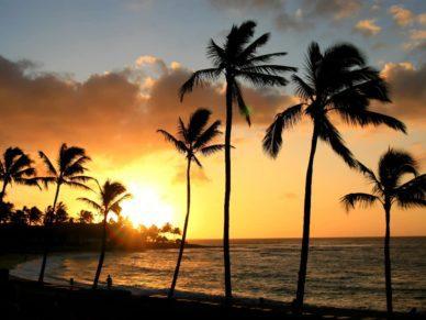 Hawaii guide bookonboard