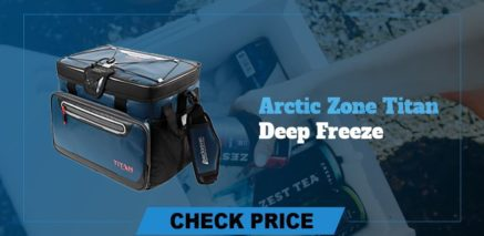 best camping coolers review arctic zone deep freeze