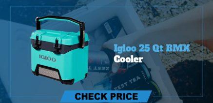 best camping coolers review igloo 25 qt bmx cooler