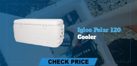best camping coolers review igloo polar 120 cooler