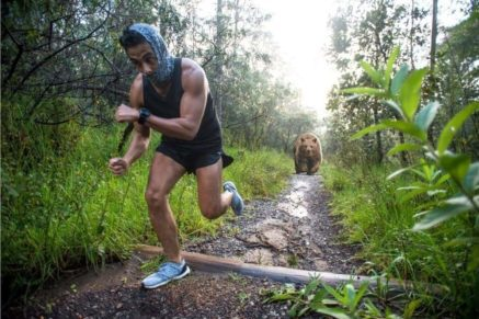 Should You Try To Outrun a Bear